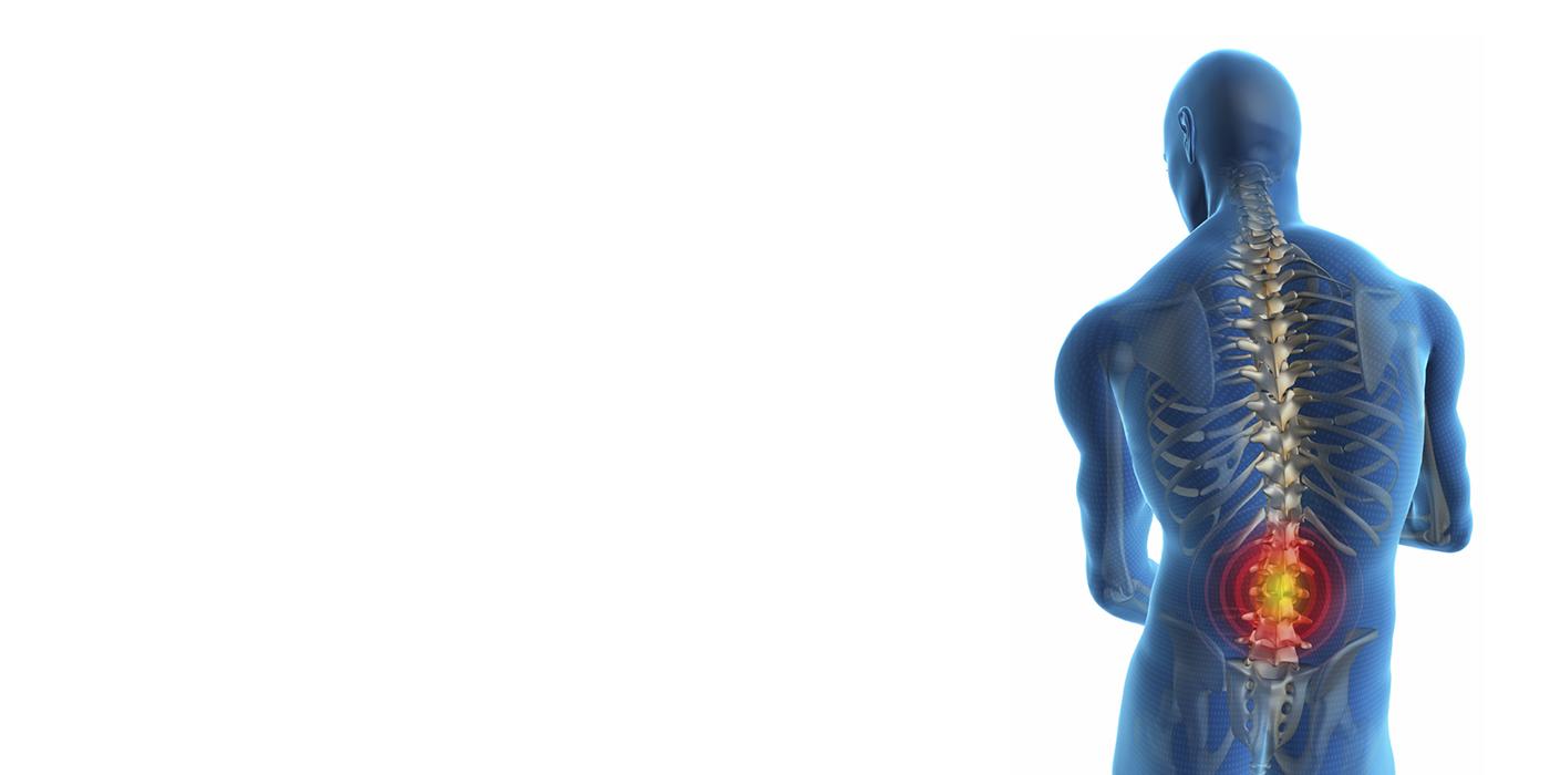 Rückenschmerzen - Der Wirbelsäulentrainer